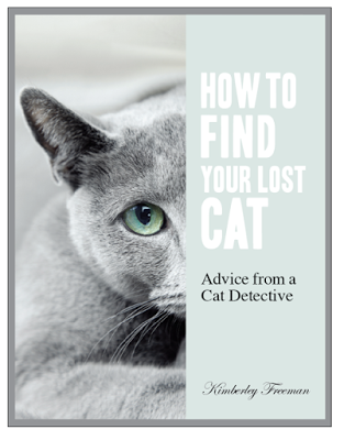 Pet detective advice on how to find lost cats