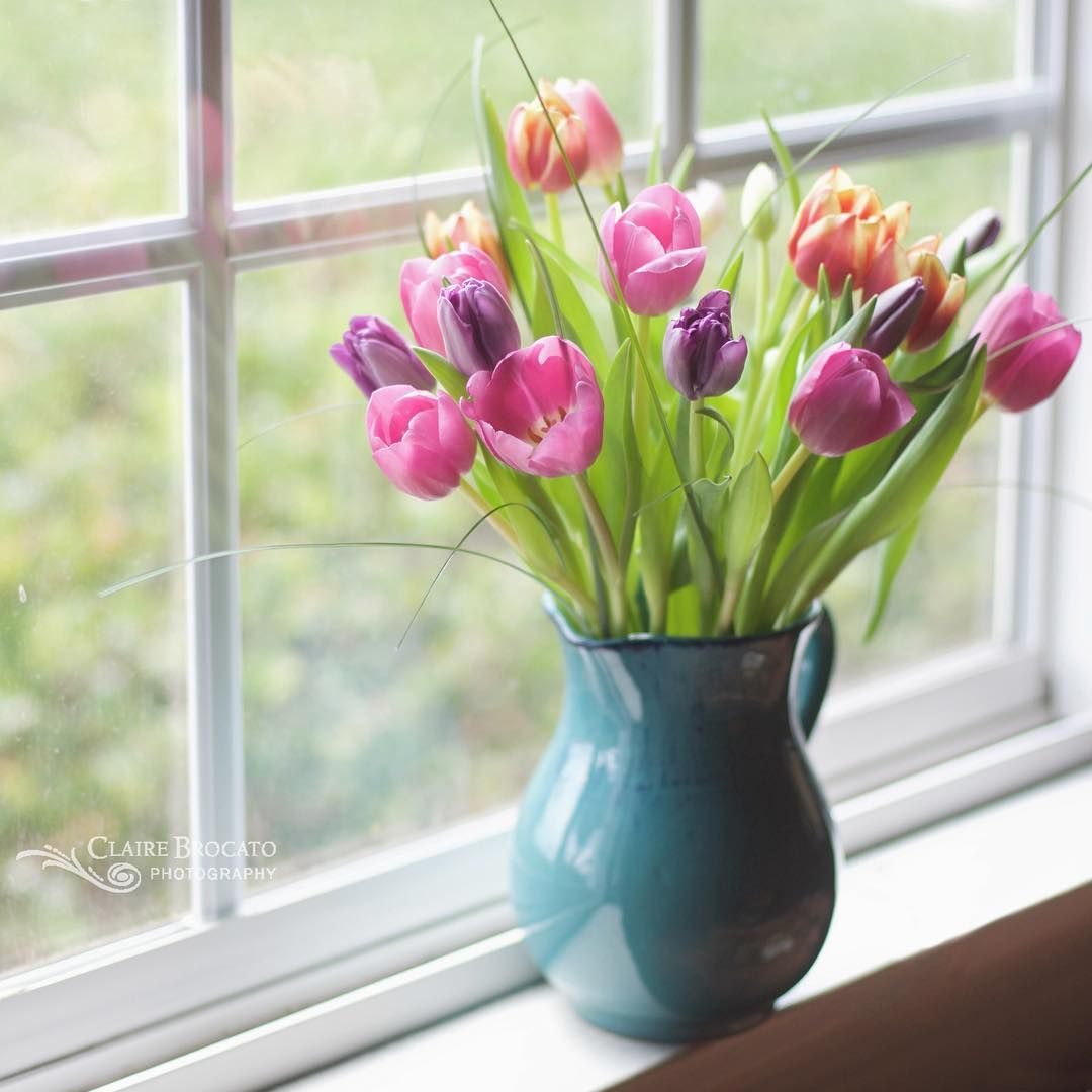These tulips were such a treat! I had to sneak one more in! . . And just a quick reminder that I'll be featuring four favorites from the #myeverydaymagic gallery tomorrow. Be sure to tag your images if you'd like to join in.