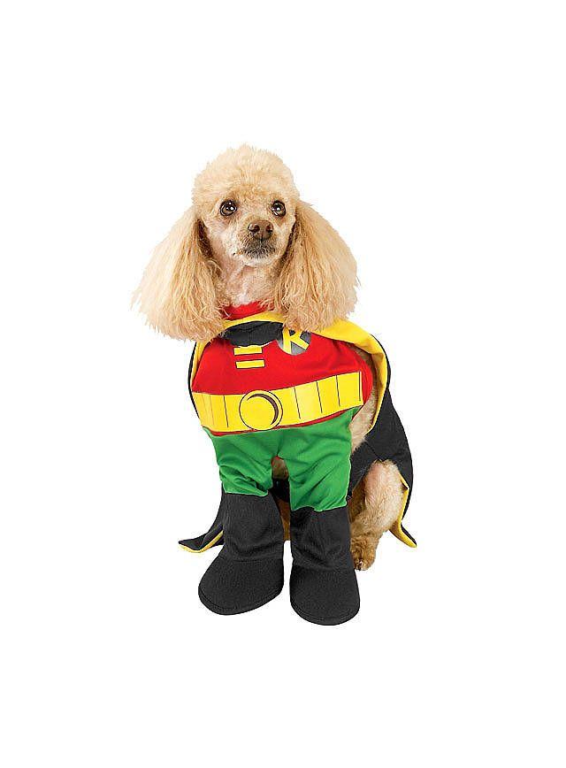 Robin Hundekostüm