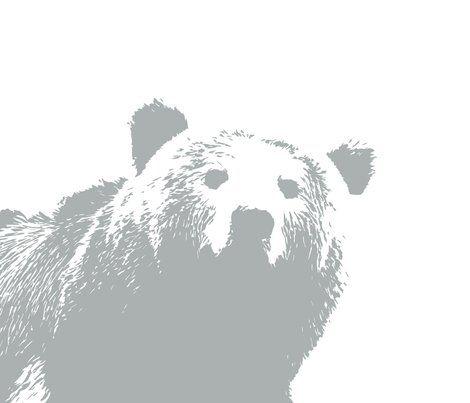 Rrgrey_bear_pillow-02_shop_preview