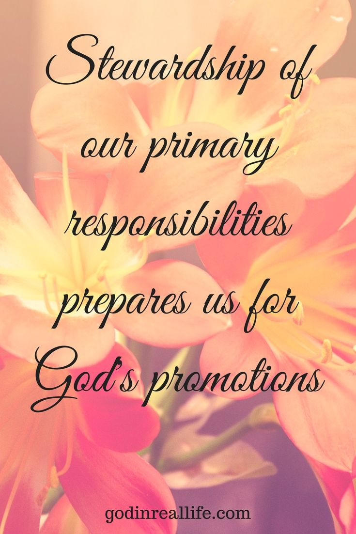 Stewardship Quotes Stewardship Of Our Primary Responsibilities Prepares Us For God's