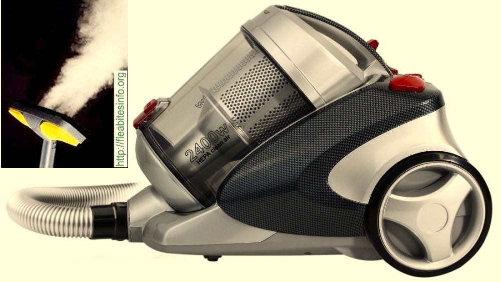 You Have Bed Bugs On Bed Kill Bed Bugs With Steam Cleaner Vacuum Cleaner Bed Bugs Vacuums