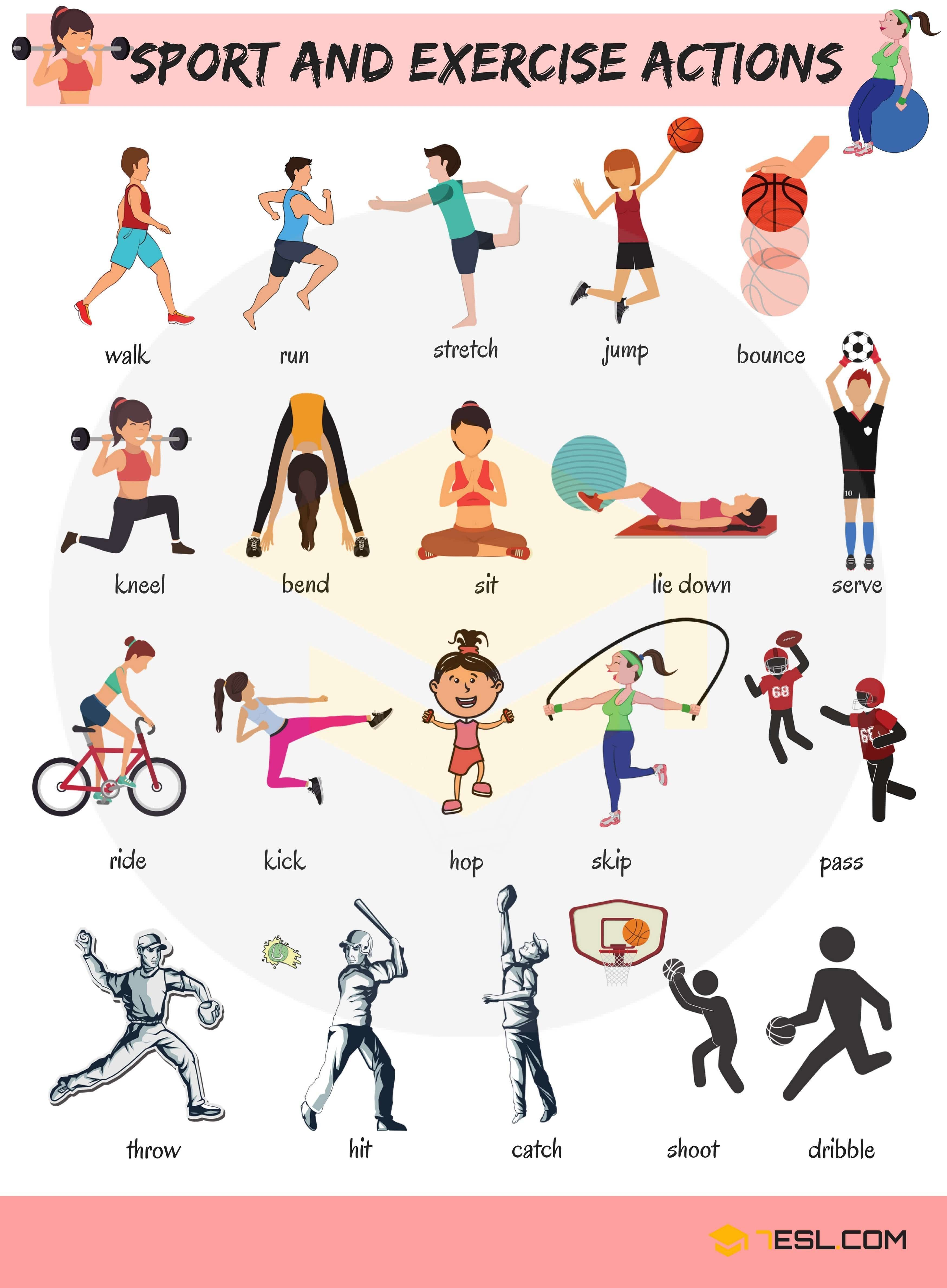 Sport and Exercise Actions Vocabulary in English English