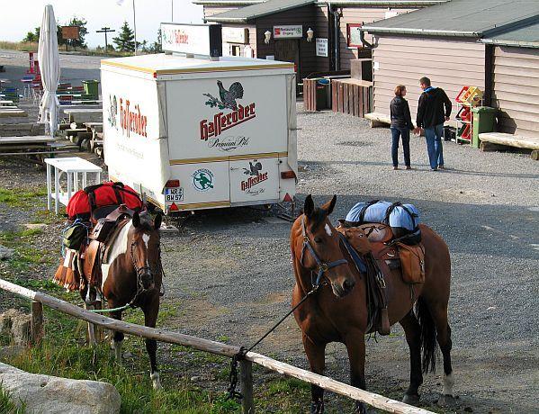 """Zwei Pferde """"Parken"""" auf dem Brockengipfel ..."""