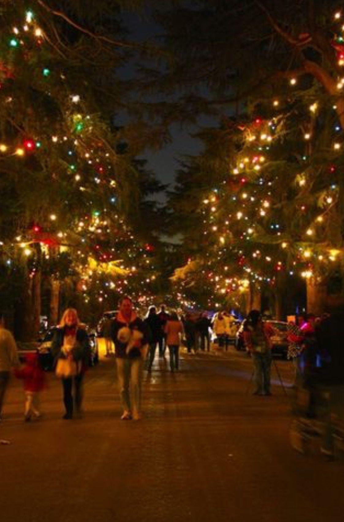 Christmas Tree Lane, Pasadena (With images) San gabriel