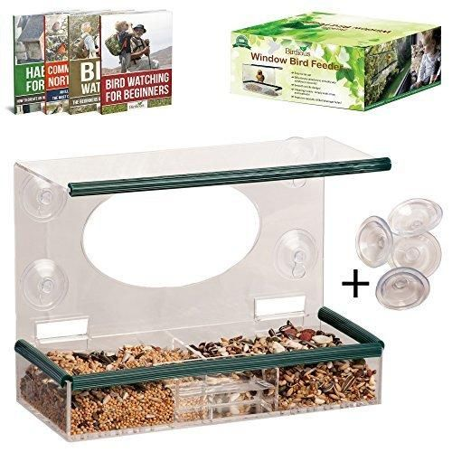 Large Clear Window Bird Feeder - View Birds Close-Up From Inside Your House Squirrel Proof Removable Tray Drain Holes Stylish Design. Best Gift For Bird Lovers & Kids. EXTRA 4 Strong Suction Cups