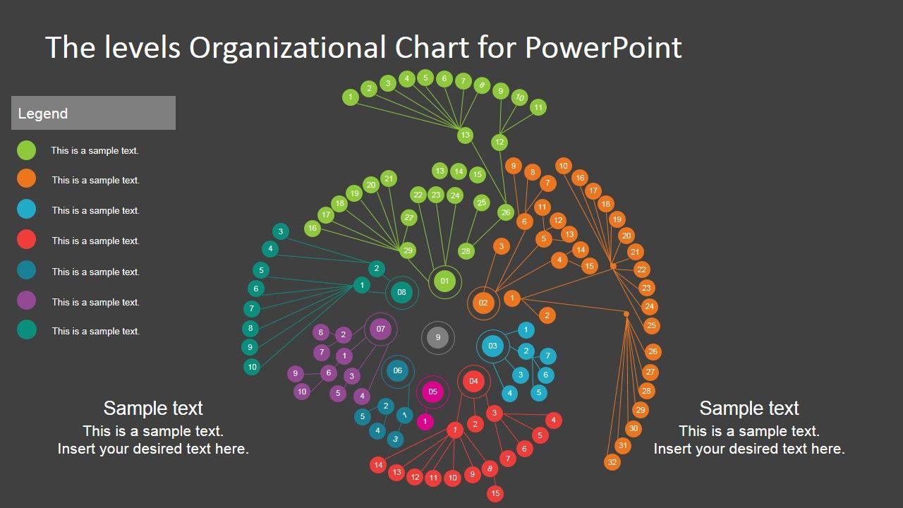 Multi Level Circular Organizational Chart Template  Data