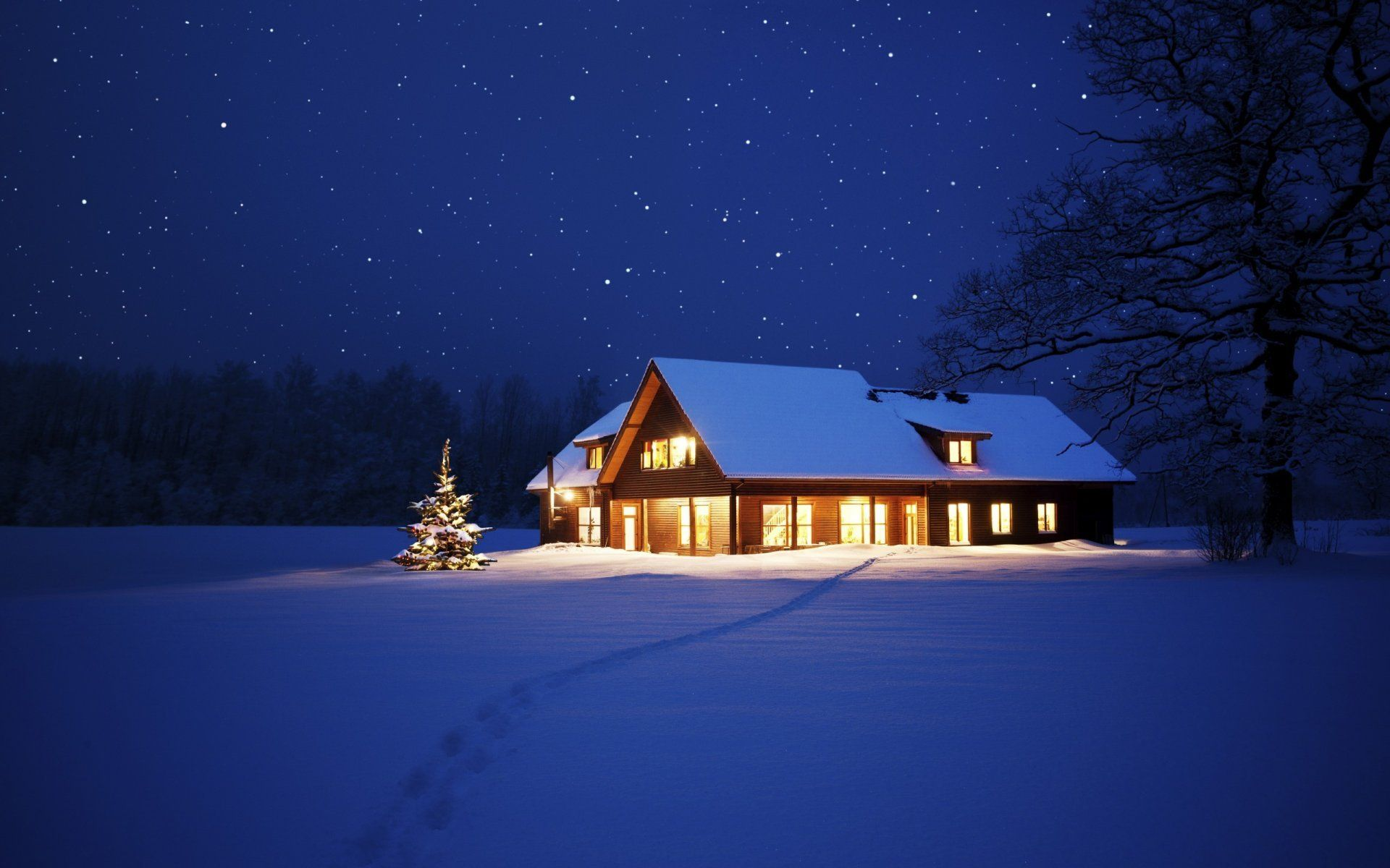 Https W Dog Net Wallpapers 9 17 325022414753017 Nature Landscape Snow Tree Winter House Night Christmas New Year Christ Winter House House In The Woods House