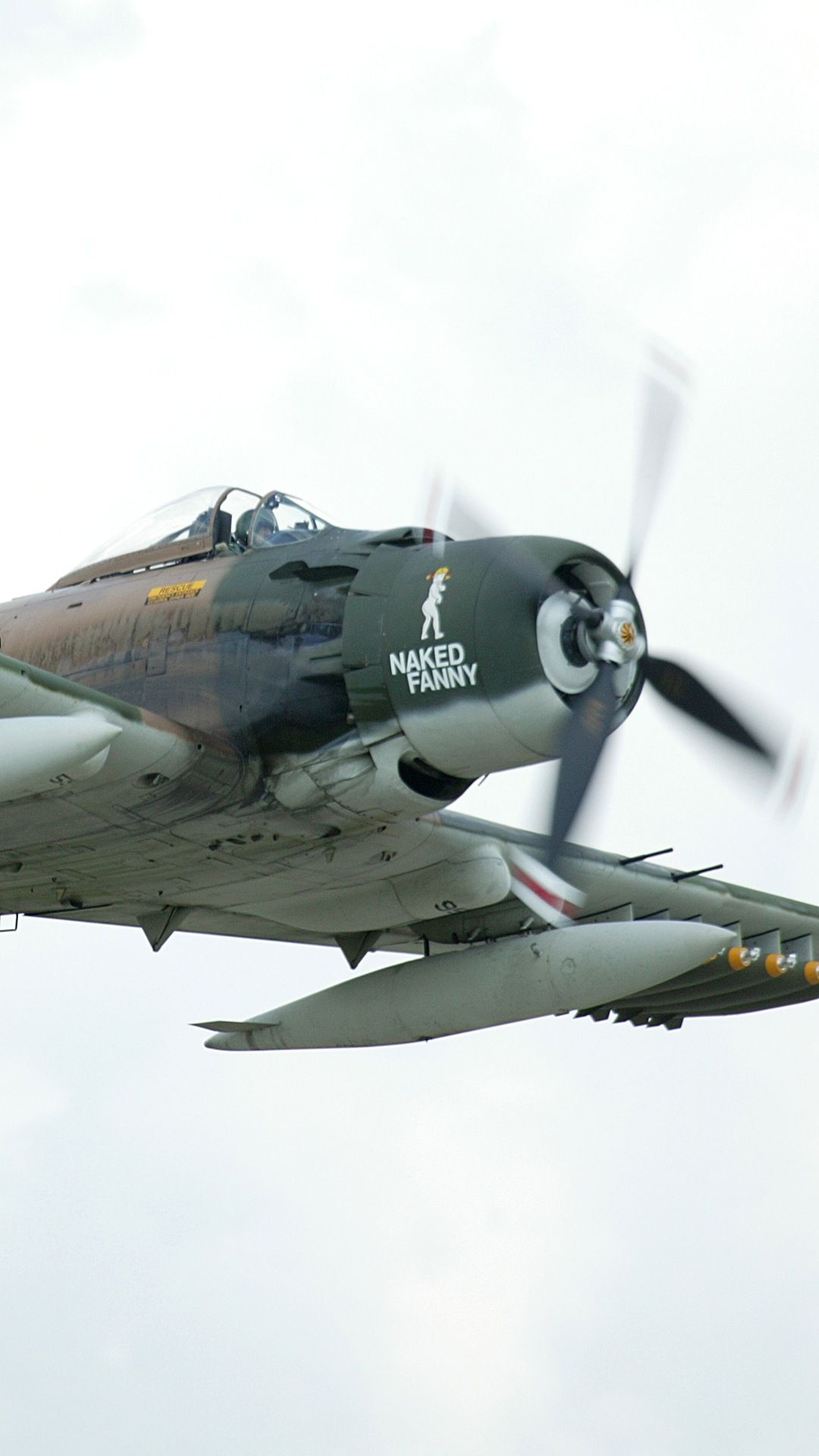 A1 Skyraider photographed at the Oshkosh airshow 2003 using a Canon 1Ds digital camera and Canon 100-400mm image stabilized lens set to 330mm  (1/500th second, f5.6, ISO 160)