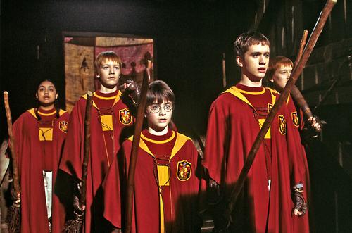 #Quidditch #Gryffindor