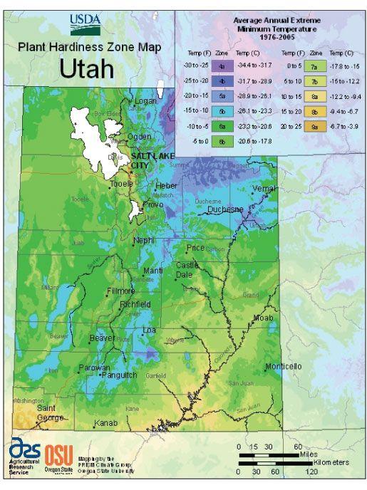 1805785961fc570c355e423646573687 - What Gardening Zone Is North Idaho