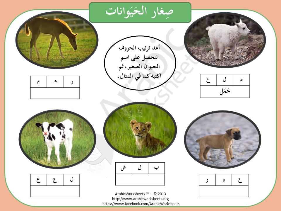 1374867 229928123834093 1745582297 N Png 960 720 Arabic Worksheets Learn Arabic Online Learning Arabic