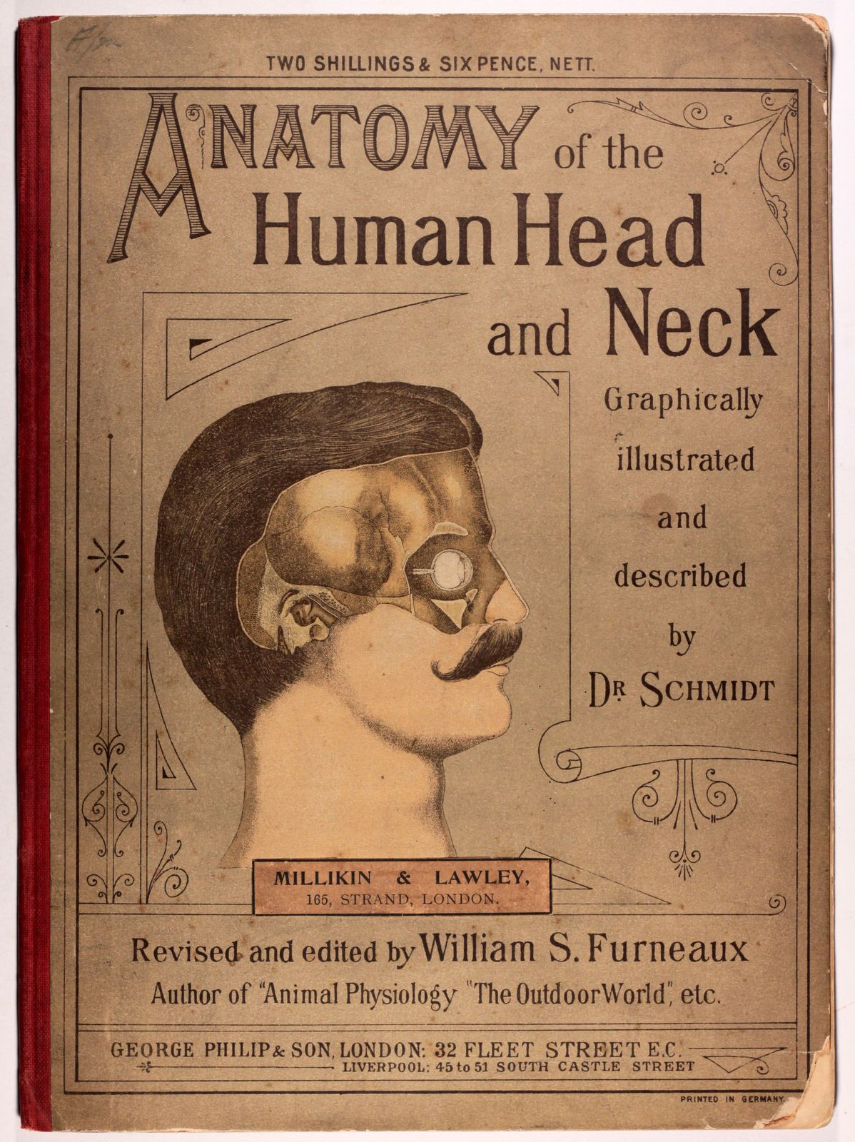 Anatomy of the Human Head and Neck. Graphically illustrated by means ...