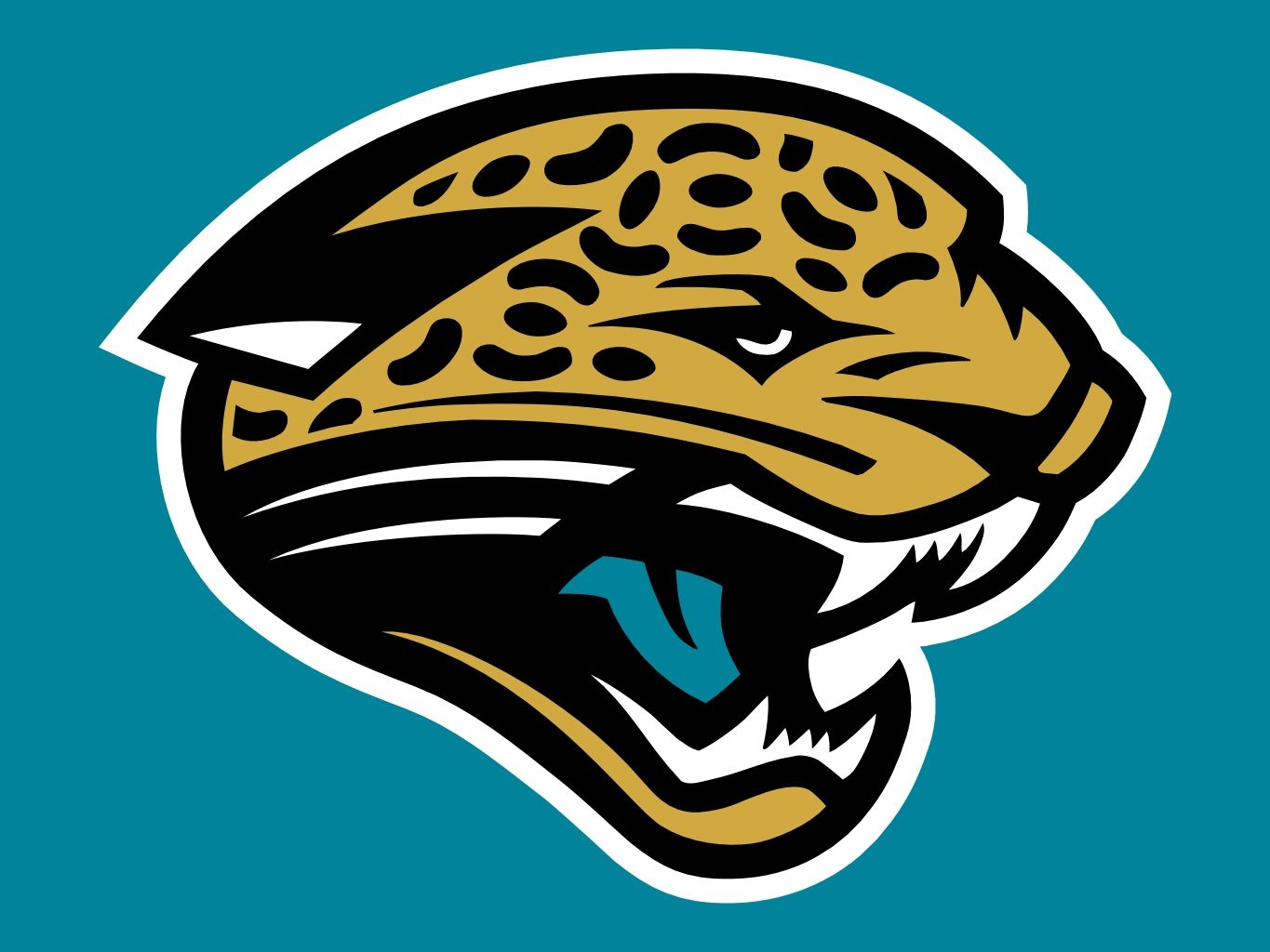 reputable site 573e3 79c54 Jacksonville Jaguars Fan Shop is an online store that offers ...