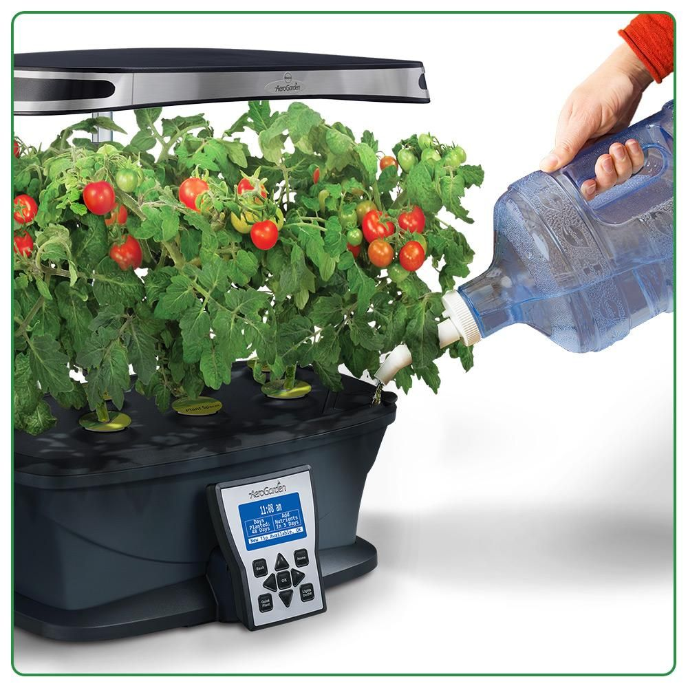 Aerogarden Ultra Led With Gourmet Herb Seed Pod Kit Herb Seeds Herbs Plants Grown In Water