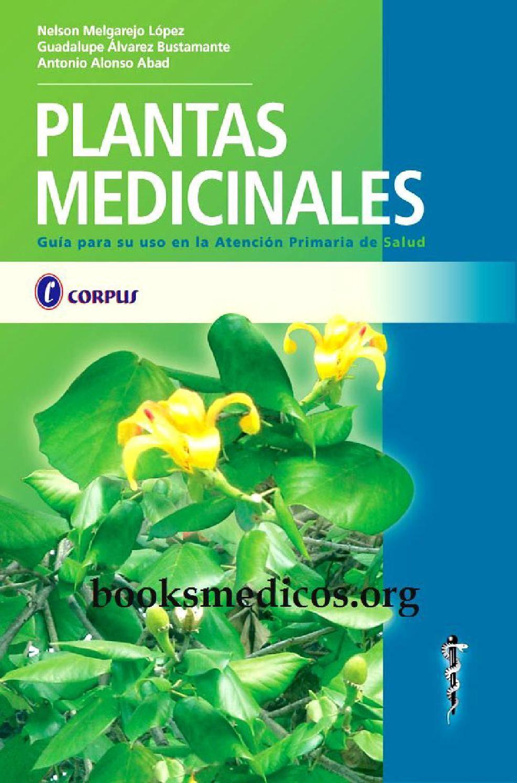 Hierbas medicinales del paraguay para adelgazar