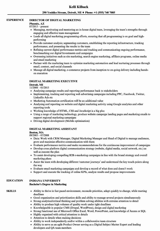 Digital marketing resume sample new digital marketing