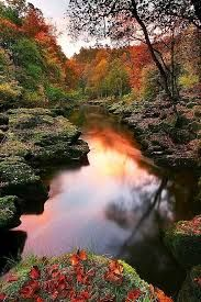 Image result for best of nature