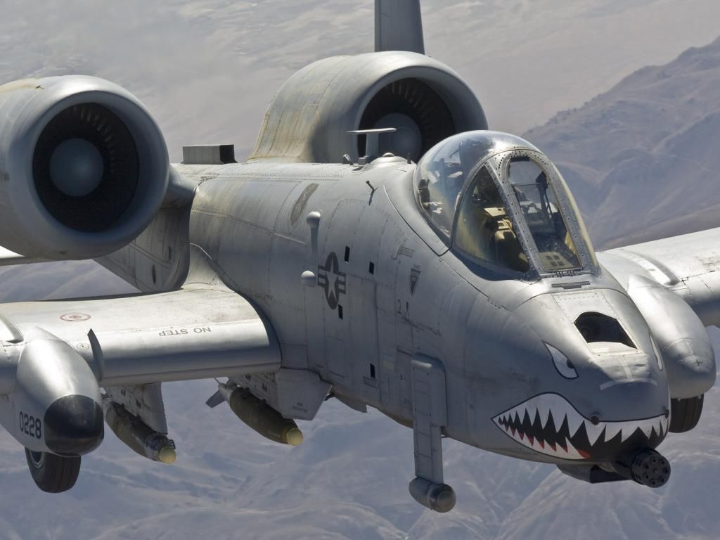 » 16 Facts You Didn't Know About the A-10 Warthog ...