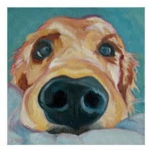 Golden Retriever Nose Painting Bing Images With Images