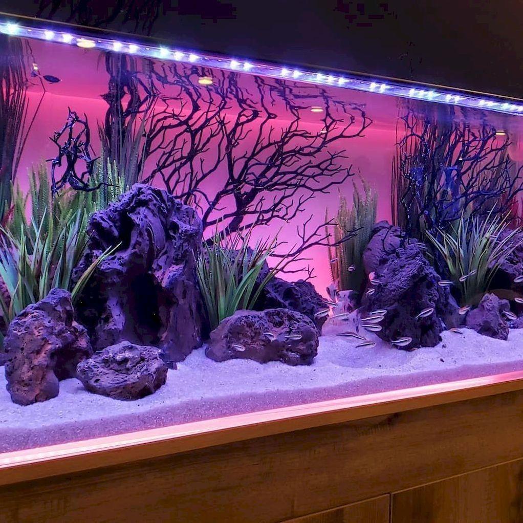 Beautiful Aquascape Aquariums Design Ideas In 2020