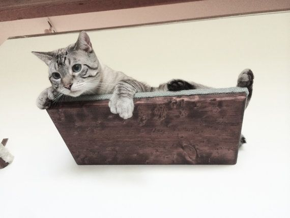 18 cat shelf with burlap top free us shipping rh pinterest fr