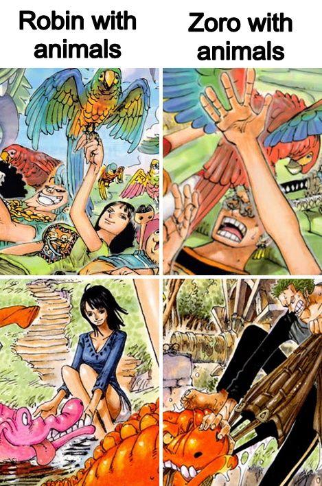 One Piece Zoro Fucking Nico Robin Free Videos Watch