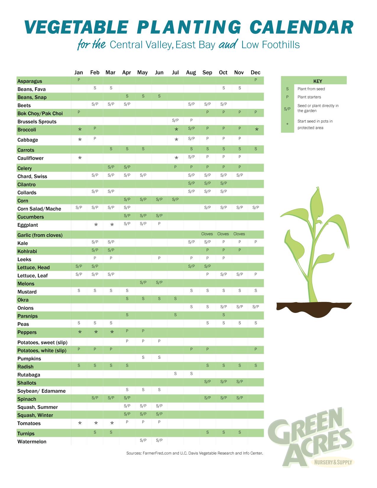 Vegetable Planting Calendar Vegetable Planting Calendar