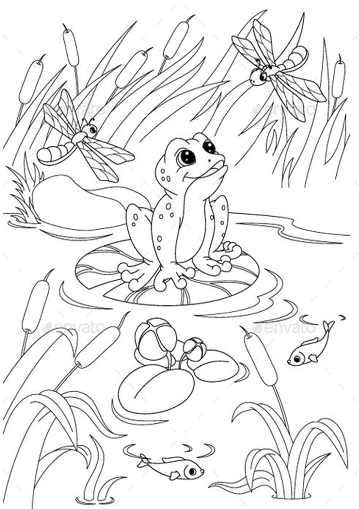 Free Easy To Print Frog Coloring Pages Frog Coloring Pages Animal Coloring Pages Pond Animals