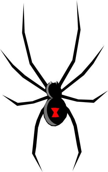 cartoon spider clip art black widow clip art