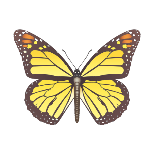 D02 Monarch Butterfly In 2021 Aesthetic Painting Aesthetic Photography Yellow Aesthetic Pastel