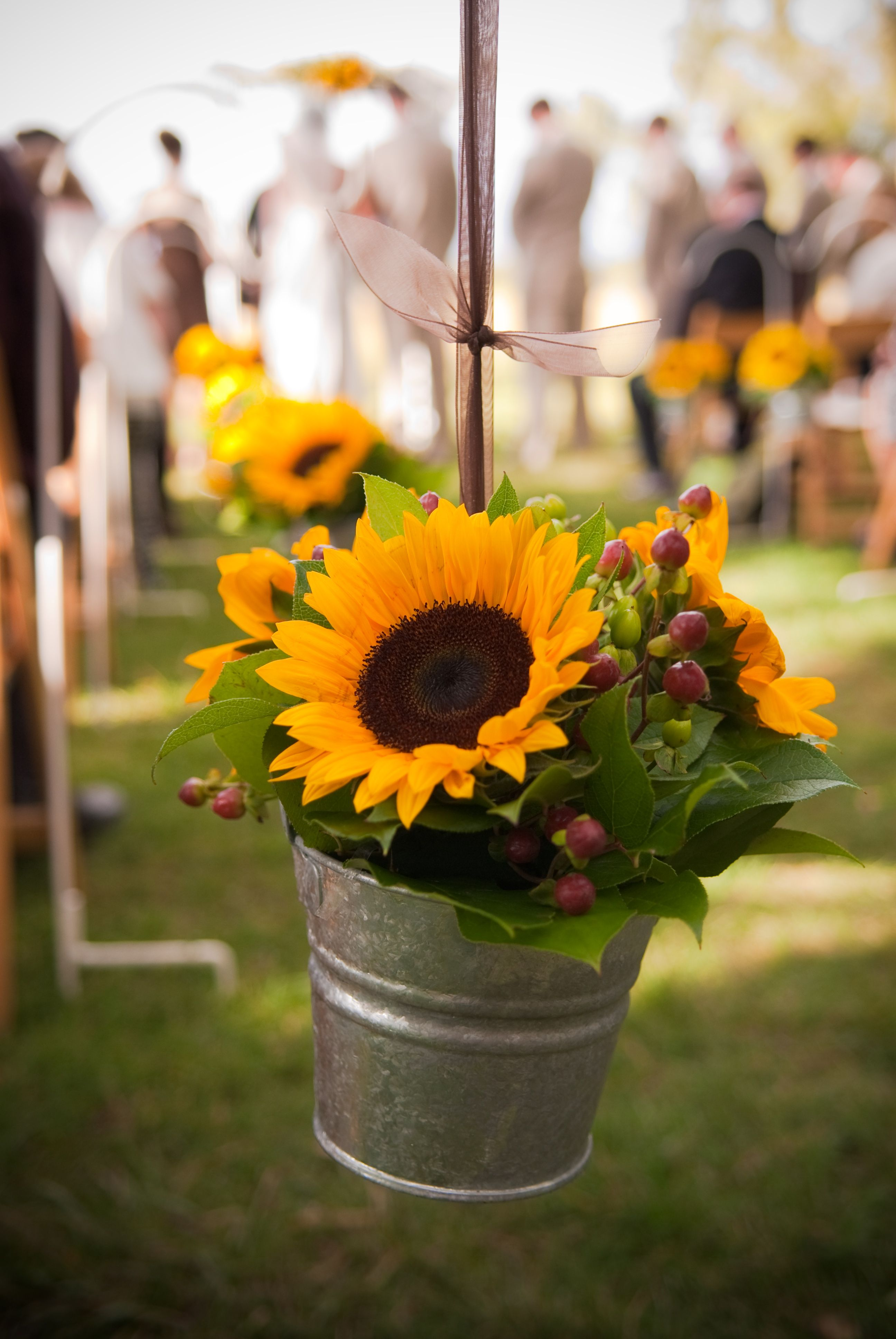 sunflowers in pails hanging from shepard hooks Sunflower