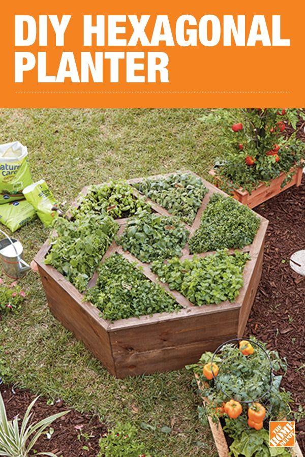 Unique DIY Hexagon Planter Raised garden beds, Garden