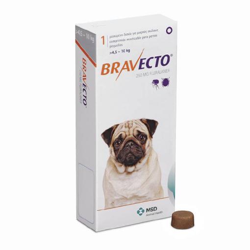 Bravecto Fleas Dogs Dogs Puppies