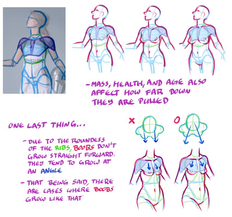 Tips og teknikker til Drawing Boobs - Side 6 Referencer Og-6534