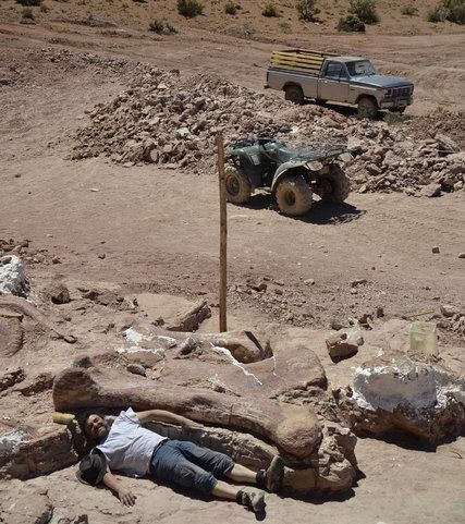 Unearthing Dinosaur Remains : Documentary on Finding ...