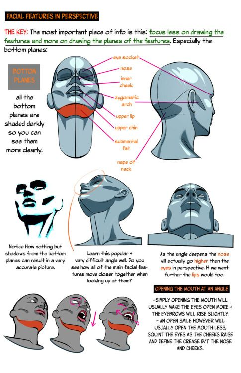 Heads Up Drawing The Head From A Low Angle By Nemonova On Deviantart Drawing Heads Drawings Anatomy Drawing