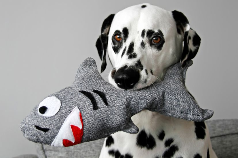 Diy Stuffed Squeaky Softie Shark Dog Toy Dog Toys Smart Dog
