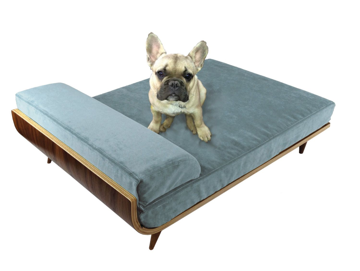Modern Cat Bed Furniture Cairu Design Modern Dog Beds Dog Accessories Dog Bed