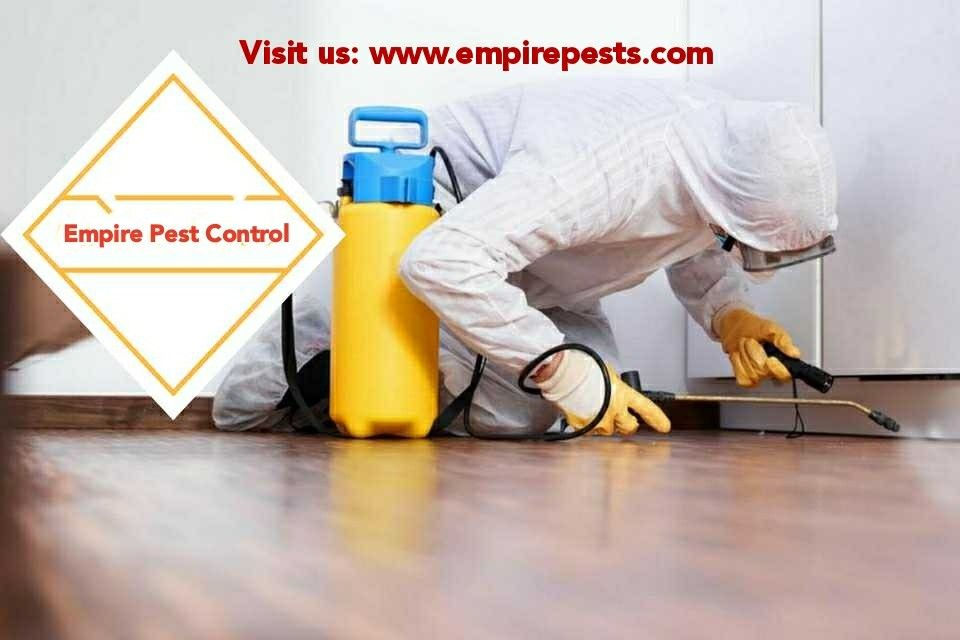 Empire pests Control is a family run friendly pest control