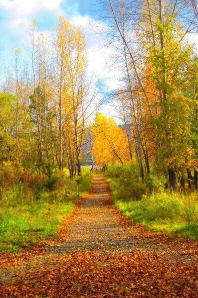 Take a walk down a country road.