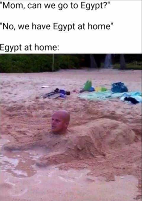 Bald Sphinx Really Funny Memes Crazy Funny Memes Funny Relatable Memes