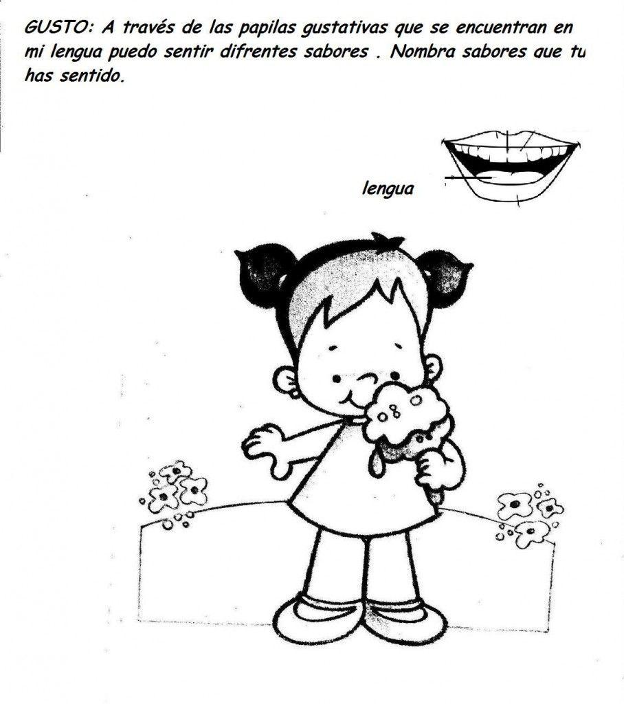 los cinco sentidos: vista,oido,gusto,tacto,olor | Educación ...