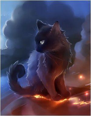 Pabu The Lonely Spirit Lost Star Odyssey Cats Illustration
