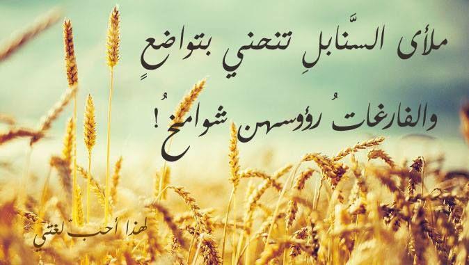 ملأى السنابل تنحني بتواضع والفارغات رؤوسهن شوامخ Wallpaper Quotes Quotes