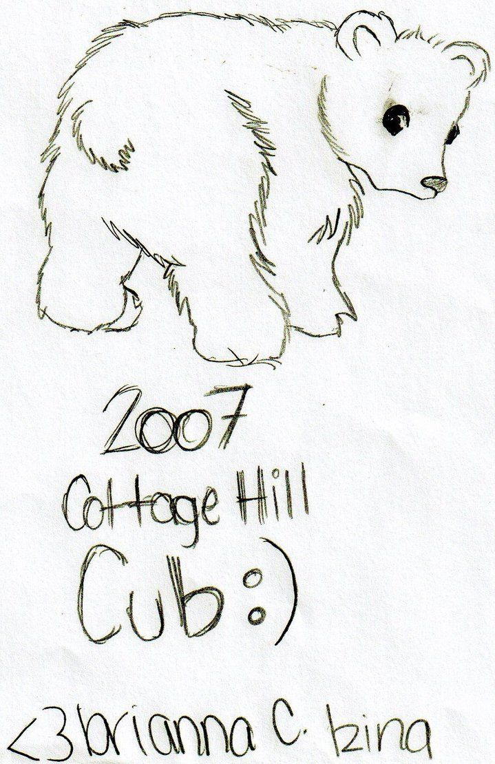 cute polar bear drawing google search tattoos pinterest