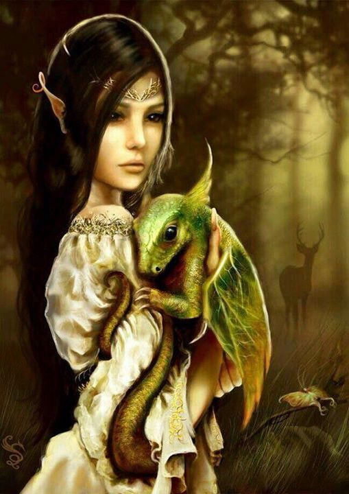 Fae and Dragon