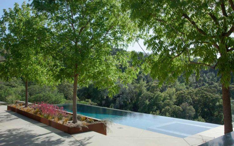 moderner-garten-hanglage-infinity-pool-bäume-niedrige-stauden, Garten und bauen