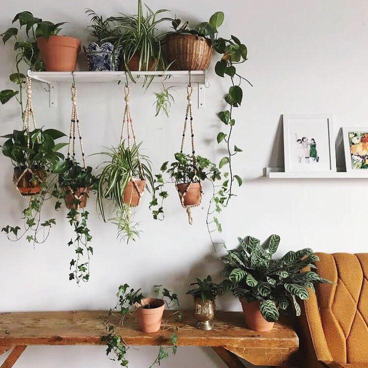 18 inspirierende Innengärten für alle, die keinen Garten haben #hangingplantsindoor