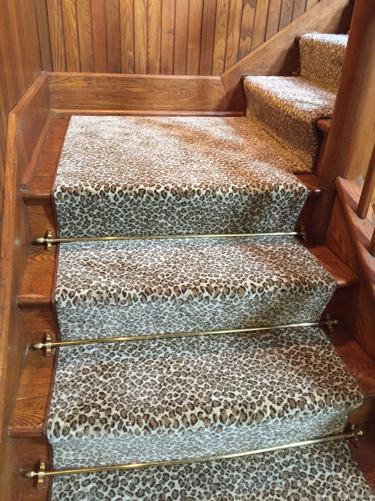 Animal Print Carpet On Steps As Runner With Decorative Stair Rods